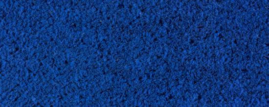Césped azul: un valor agregado para tu negocio