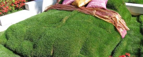¿Cama de césped artificial o hierba natural?